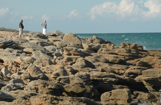The park's coquina rock coast.