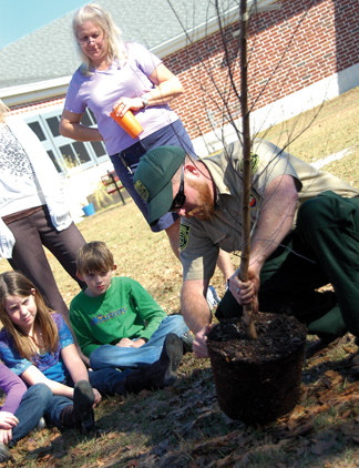 Mr. Lamborn prepares the trees' roots for planting.