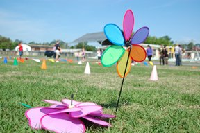 Decorative flowers in the field at Spring Fling.