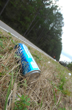 Some of the litter scattered on Woodlawn Road this week.