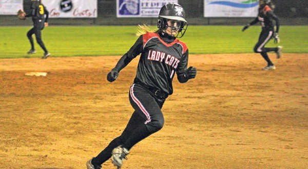 Lady Cats softball improves to seven wins